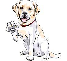 Labrador Retriever smiles and gives a paw Photographic Print