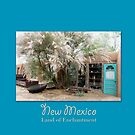 New Mexico Travel Poster II by cinn