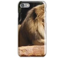 Aslan the Lion iPhone Case/Skin