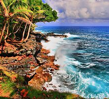 Puna Coast Hawaii by DJ Florek