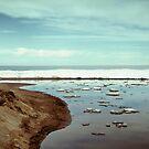 Lake Erie Ice Flow by Shawna Rowe