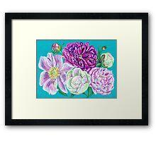 Peonies flowers Framed Print
