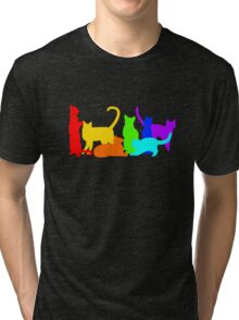 Rainbow Cats Tri-blend T-Shirt
