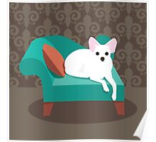Flat design white Chihuahua on her chaise longue Poster
