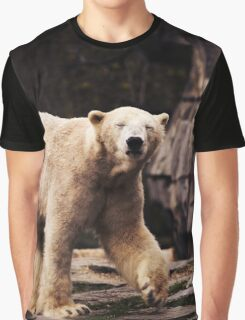 bear, polar bear Graphic T-Shirt