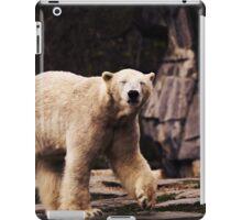 bear, polar bear iPad Case/Skin