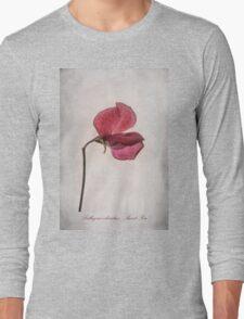 Lathyrus odoratus - Sweet Pea Long Sleeve T-Shirt