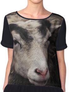 sheep Chiffon Top