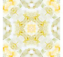 Nature Mandala X Photographic Print