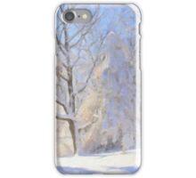Snowy Lakeshore iPhone Case/Skin