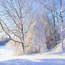 Snowy Lakeshore by Tom  Reynen