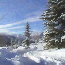 Snow Trail by Tom  Reynen