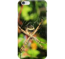 Orb Weaver Spider iPhone Case/Skin