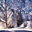 Winter Abstract by Tom  Reynen
