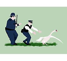 Swan cops Photographic Print