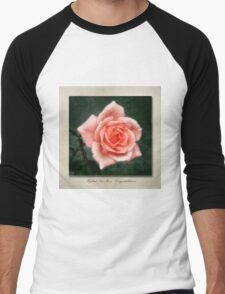 Tea Rose, Congratulations Men's Baseball ¾ T-Shirt