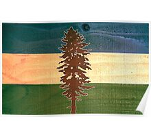 The Doug Flag on Cedar Poster