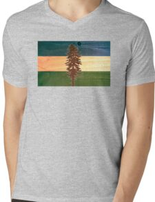 The Doug Flag on Cedar Mens V-Neck T-Shirt
