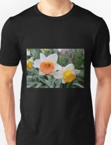 Daffodils After Hard Rain Unisex T-Shirt