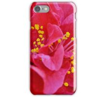 Pink and Yellow iPhone Case/Skin