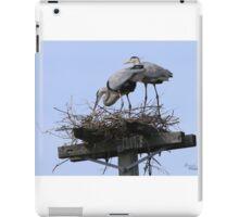 Herons in the Sun iPad Case/Skin