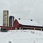 A cold dairy farm by vigor
