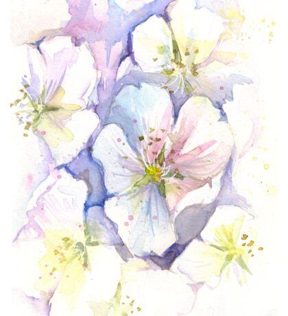 Cherry Blossoms Watercolor Sticker