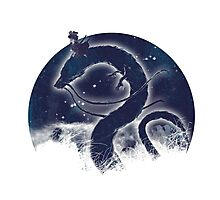 Dragon Delivery Service Photographic Print