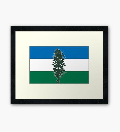 The Doug Flag Framed Print