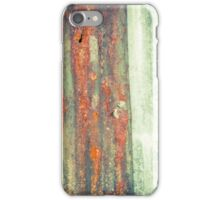 Boat Shed iPhone Case/Skin