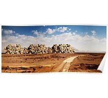 Desert Habitat Poster