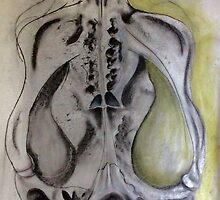 Wombat skull by Michelle Pullen