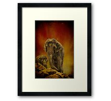 Escape from the Edge. Framed Print