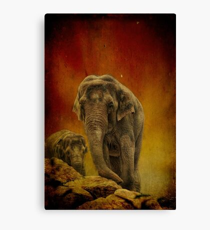 Escape from the Edge. Canvas Print
