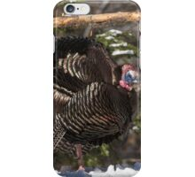 Turkeys feeding on corn iPhone Case/Skin