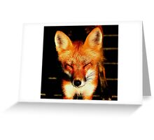WHO TURNED ON THE SUN!!! Greeting Card