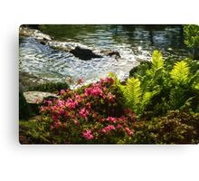 Wild Rhododendrons and Ferns by the Silver River Canvas Print