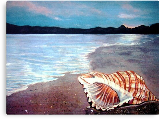Seashell  by Linda Callaghan