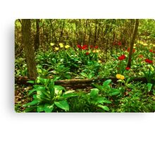 Green, Yellow and Red - Tulip Forest Impressions  Canvas Print