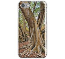 Ficus Microcarpa  iPhone Case/Skin
