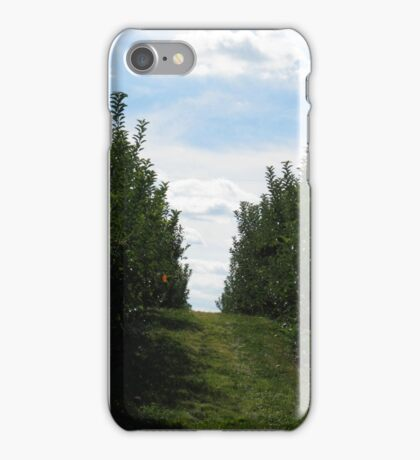 orchard lanes iPhone Case/Skin