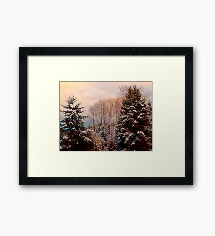 Snow in the Northwest Framed Print