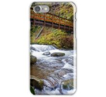 Oneonta Creek Bridge iPhone Case/Skin