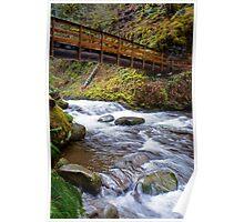 Oneonta Creek Bridge Poster