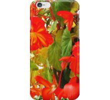 YELLOW AND REDS IN BLOOM  iPhone Case/Skin