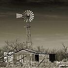 West Texas by Sherryll  Johnson