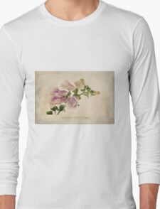 Digitalis purpurea (Common Foxglove) Long Sleeve T-Shirt
