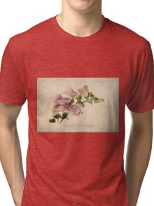 Digitalis purpurea (Common Foxglove) Tri-blend T-Shirt