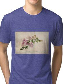 Digitalis purpurea (Common Foxglove) Tri-blend T-Shirt