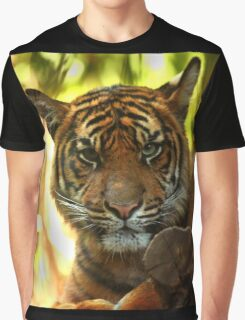 Tiger Stare Graphic T-Shirt